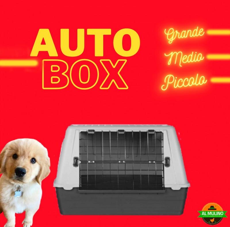 box cani auto